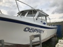 Picture for Plant; OSPREY 26 Angling boat SOLD SOLD SOLD LL